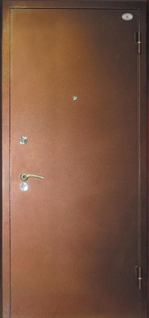 металлические двери в е